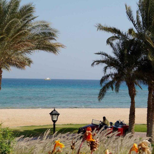 egypt (2)