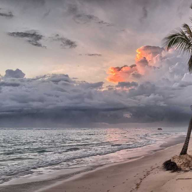 Dominicana (5)